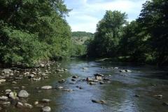 Le Lot, en amont du barrage de Castenau-Lassouts-Lous