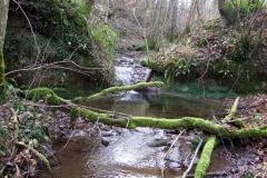 Le ruisseau d'Astruges à Bessuéjouls