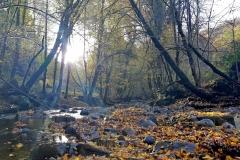 La Boralde Saint-Chély aux couleurs de l'automne