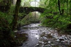 le Ruisseau de Coussane à Estaing
