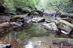 Le ruisseau du Merdanson